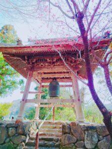 杉本寺写真